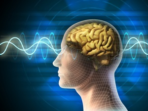 Neuroplasticity-Change-the-Structure-of-your-Brain_OM-Times