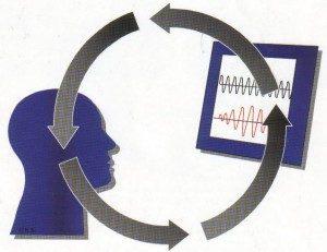 Learn neurofeedback online